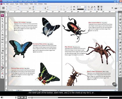 Adobe InDesign CS5 CS6 CC - Introduction Training in Belfast Northern Ireland  at Mullan Training OR On your Own Premises - Need to Publish Professional Newsletters
